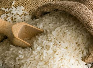 大米生虫子怎么办 大米生虫子还能吃吗