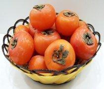 【柿子吃多了会上火吗】柿子和牛奶能一起吃_柿子和酸奶能一起吃吗