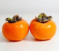 【柿子的禁忌】柿子的功效_柿子怎么催熟