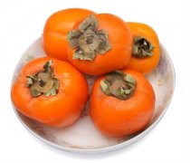 【软柿子怎么保存】软柿子怎么吃_软柿子的功效与作用