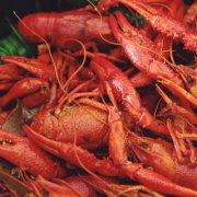 珐琅锅焖小龙虾的做法