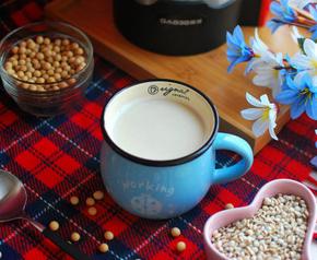 祛湿薏米豆浆的家常做法